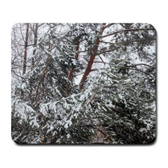 Winter Fall Trees Large Mousepads
