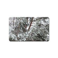 Winter Fall Trees Magnet (Name Card)