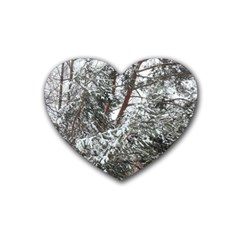 Winter Fall Trees Heart Coaster (4 pack)