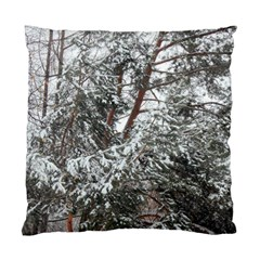 Winter Fall Trees Standard Cushion Case (Two Sides)
