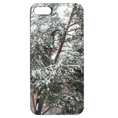 Winter Fall Trees Apple iPhone 5 Hardshell Case with Stand