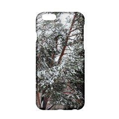 Winter Fall Trees Apple iPhone 6/6S Hardshell Case