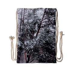 Winter Fall Trees Drawstring Bag (Small)