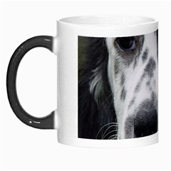 English Setter Morph Mugs