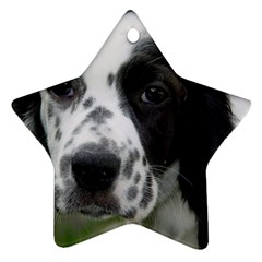 English Setter Star Ornament (Two Sides)