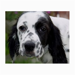 English Setter Small Glasses Cloth (2-Side)