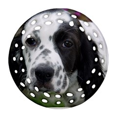 English Setter Round Filigree Ornament (Two Sides)