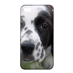 English Setter Apple iPhone 4/4s Seamless Case (Black)