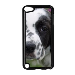 English Setter Apple iPod Touch 5 Case (Black)