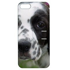 English Setter Apple iPhone 5 Hardshell Case with Stand