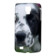 English Setter Galaxy S4 Active