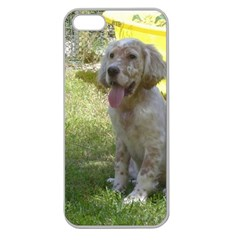 English Setter Orange Belton Puppy Apple Seamless iPhone 5 Case (Clear)