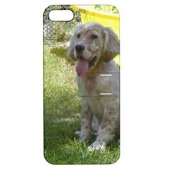 English Setter Orange Belton Puppy Apple iPhone 5 Hardshell Case with Stand