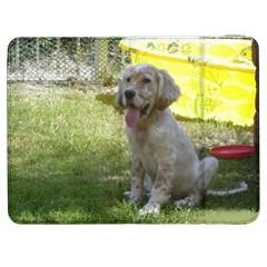 English Setter Orange Belton Puppy Samsung Galaxy Tab 7  P1000 Flip Case