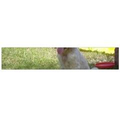 English Setter Orange Belton Puppy Flano Scarf (Large)