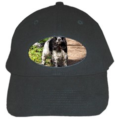 Black Roan English Cocker Spaniel Black Cap