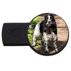 Black Roan English Cocker Spaniel USB Flash Drive Round (2 GB)