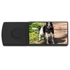 Black Roan English Cocker Spaniel USB Flash Drive Rectangular (1 GB)