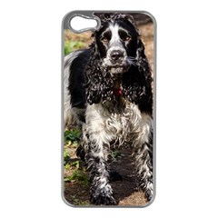 Black Roan English Cocker Spaniel Apple iPhone 5 Case (Silver)