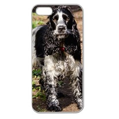 Black Roan English Cocker Spaniel Apple Seamless iPhone 5 Case (Clear)