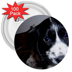 Black Roan English Cocker Spaniel Puppy 3  Buttons (100 pack)