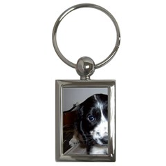 Black Roan English Cocker Spaniel Puppy Key Chains (Rectangle)
