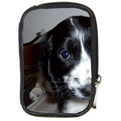 Black Roan English Cocker Spaniel Puppy Compact Camera Cases