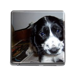 Black Roan English Cocker Spaniel Puppy Memory Card Reader (Square)