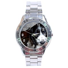Black Roan English Cocker Spaniel Puppy Stainless Steel Analogue Watch