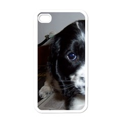 Black Roan English Cocker Spaniel Puppy Apple iPhone 4 Case (White)