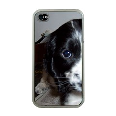Black Roan English Cocker Spaniel Puppy Apple iPhone 4 Case (Clear)