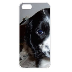 Black Roan English Cocker Spaniel Puppy Apple iPhone 5 Seamless Case (White)