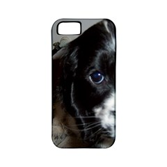Black Roan English Cocker Spaniel Puppy Apple iPhone 5 Classic Hardshell Case (PC+Silicone)