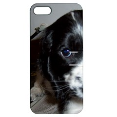 Black Roan English Cocker Spaniel Puppy Apple iPhone 5 Hardshell Case with Stand