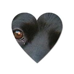 Cocker Spaniel Black Eyes Heart Magnet