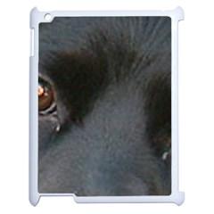 Cocker Spaniel Black Eyes Apple iPad 2 Case (White)