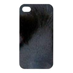 Cocker Spaniel Black Eyes Apple iPhone 4/4S Premium Hardshell Case