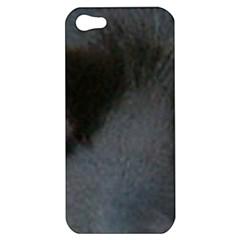 Cocker Spaniel Black Eyes Apple iPhone 5 Hardshell Case