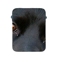 Cocker Spaniel Black Eyes Apple iPad 2/3/4 Protective Soft Cases