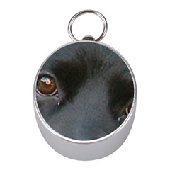 Cocker Spaniel Black Eyes Mini Silver Compasses