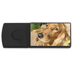 Red Cocker Spaniel Red USB Flash Drive Rectangular (4 GB)