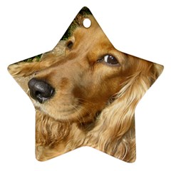Red Cocker Spaniel Red Star Ornament (Two Sides)