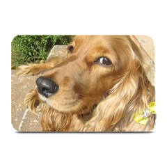 Red Cocker Spaniel Red Plate Mats