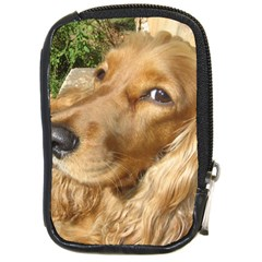 Red Cocker Spaniel Red Compact Camera Cases