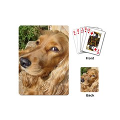 Red Cocker Spaniel Red Playing Cards (Mini)