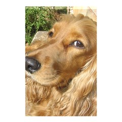 Red Cocker Spaniel Red Shower Curtain 48  x 72  (Small)