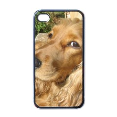 Red Cocker Spaniel Red Apple iPhone 4 Case (Black)