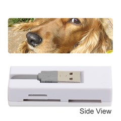 Red Cocker Spaniel Red Memory Card Reader (Stick)