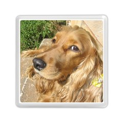 Red Cocker Spaniel Red Memory Card Reader (Square)