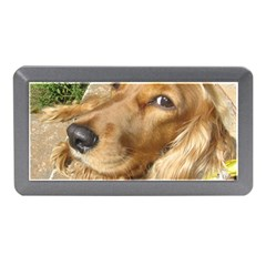 Red Cocker Spaniel Red Memory Card Reader (Mini)